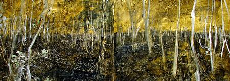 Urban Wetlands